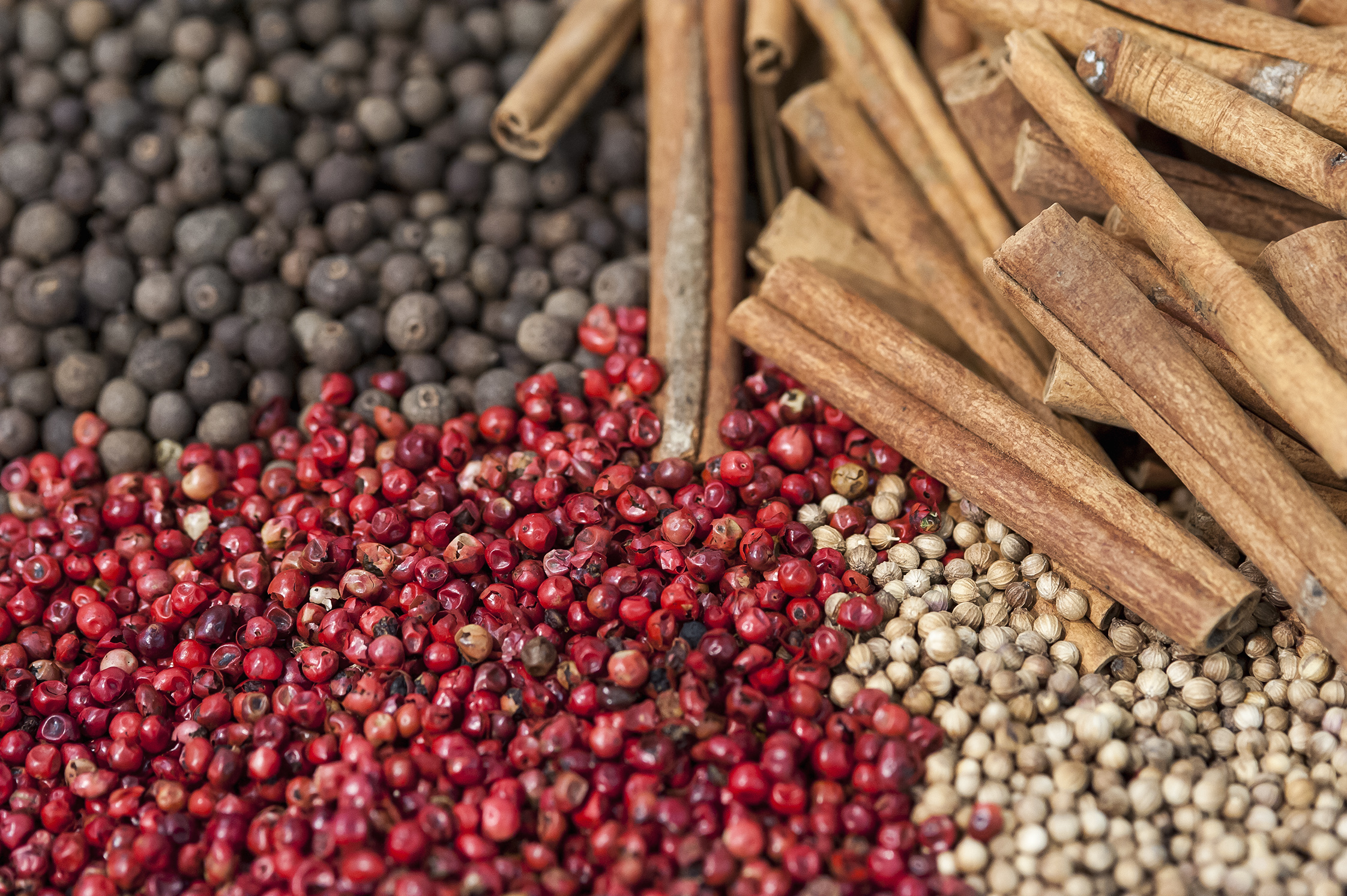 Ingredients, spices and herbs, auxiliary products, casings